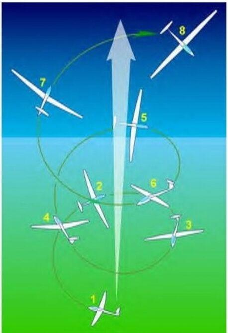 Termiczny prąd wznoszący, komin, to swoista winda dla ptaków i szybowców/Sebastian Kawa