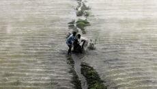 Powódź wykańcza Pakistan. Miliony poszkodowanych
