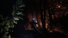 Pożary na greckiej wyspie (PAP/EPA/KOSTAS TSIRONIS)
